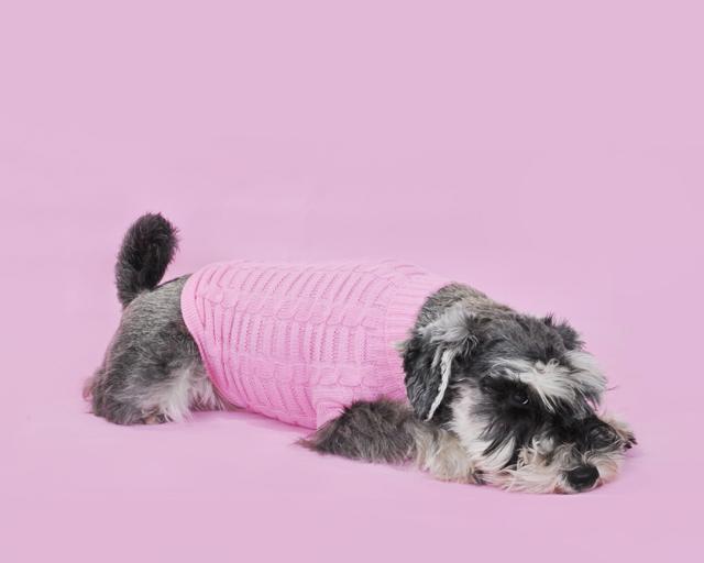 Web Oldies Club jumper - pink