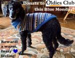 Oldies Club, Blue Monday, dog rescue