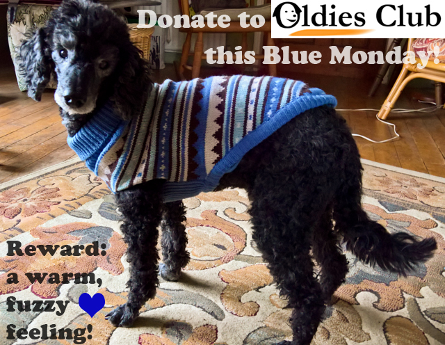 Oldies Club, Blue Monday, dog rescue