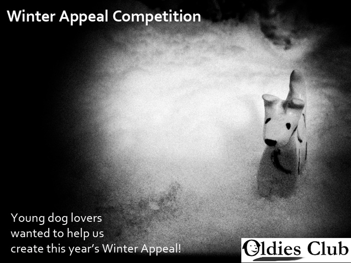 Winter Appeal, Competition